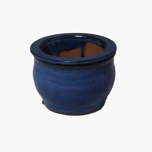 Self-watering Ceramic Pots