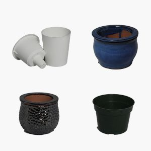 Violet Pots